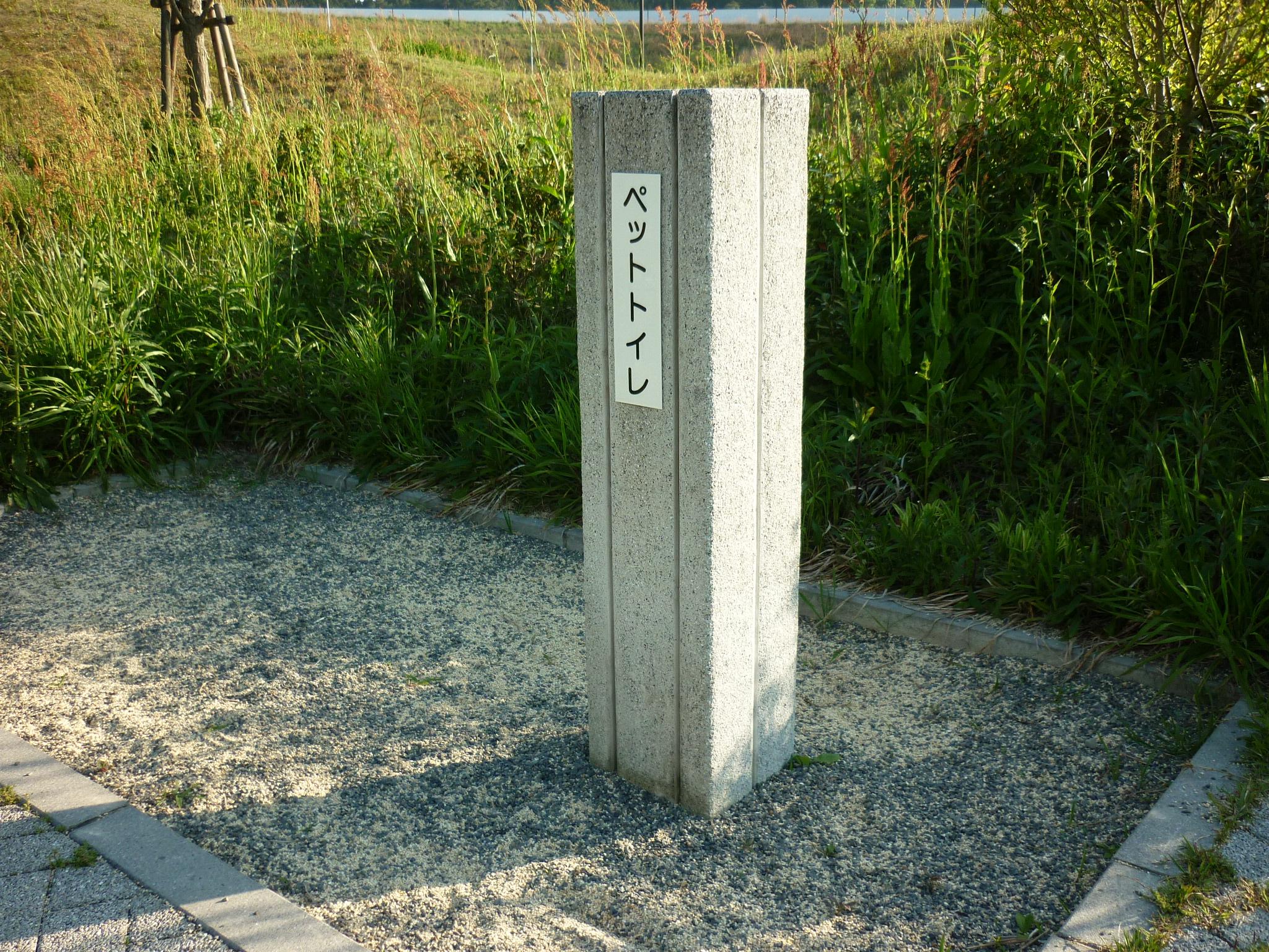 琵琶湖⑦帰路-04