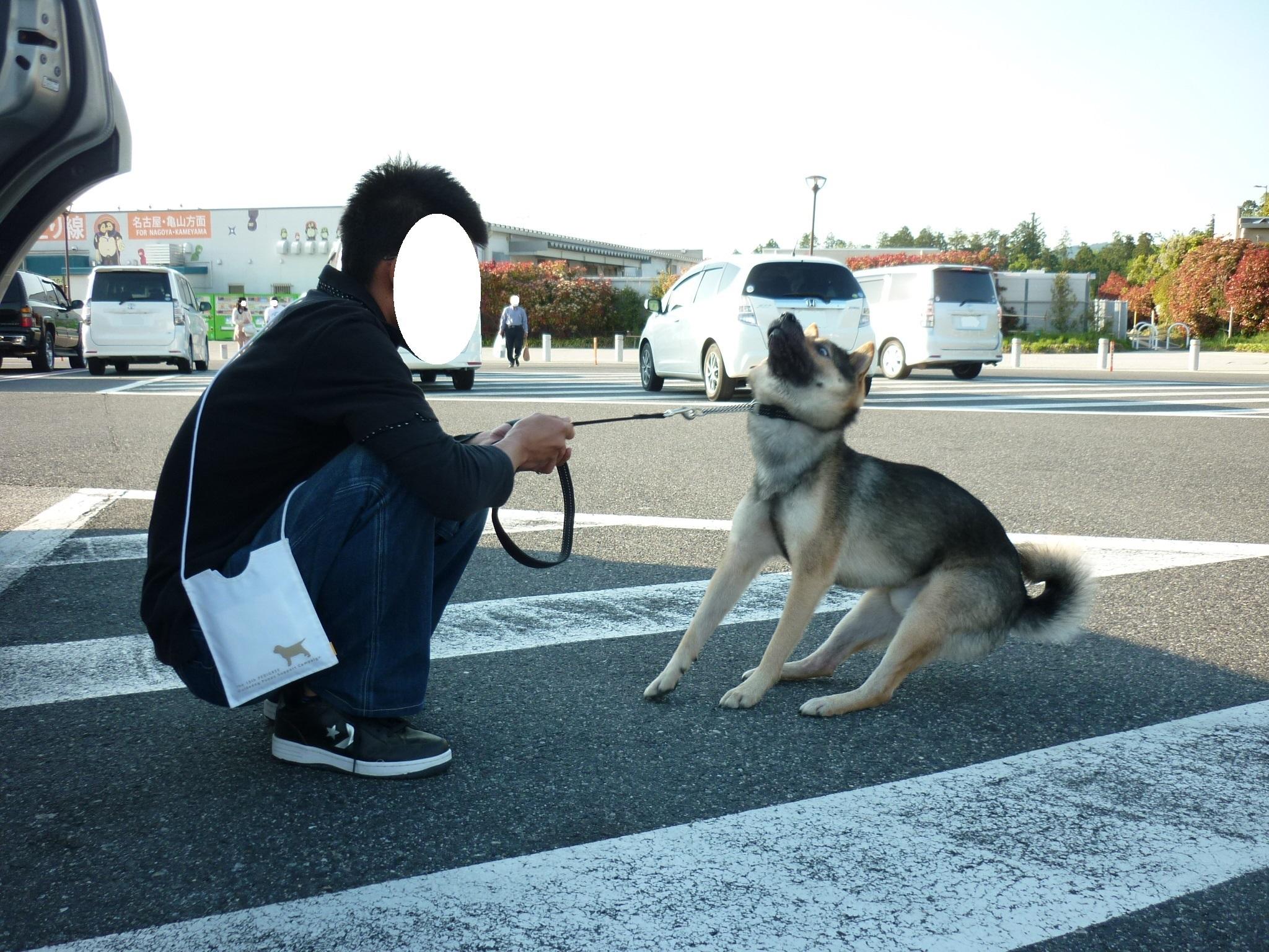 琵琶湖⑦帰路-06