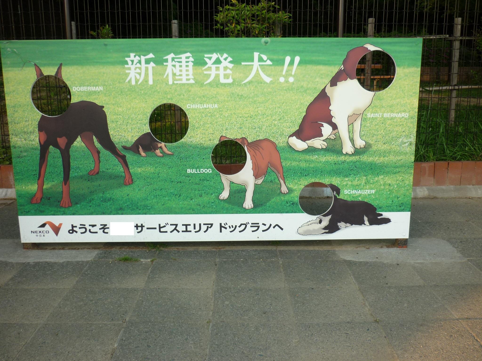 琵琶湖⑦帰路-10