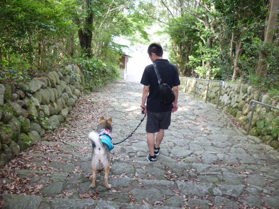 201406横山展望台10