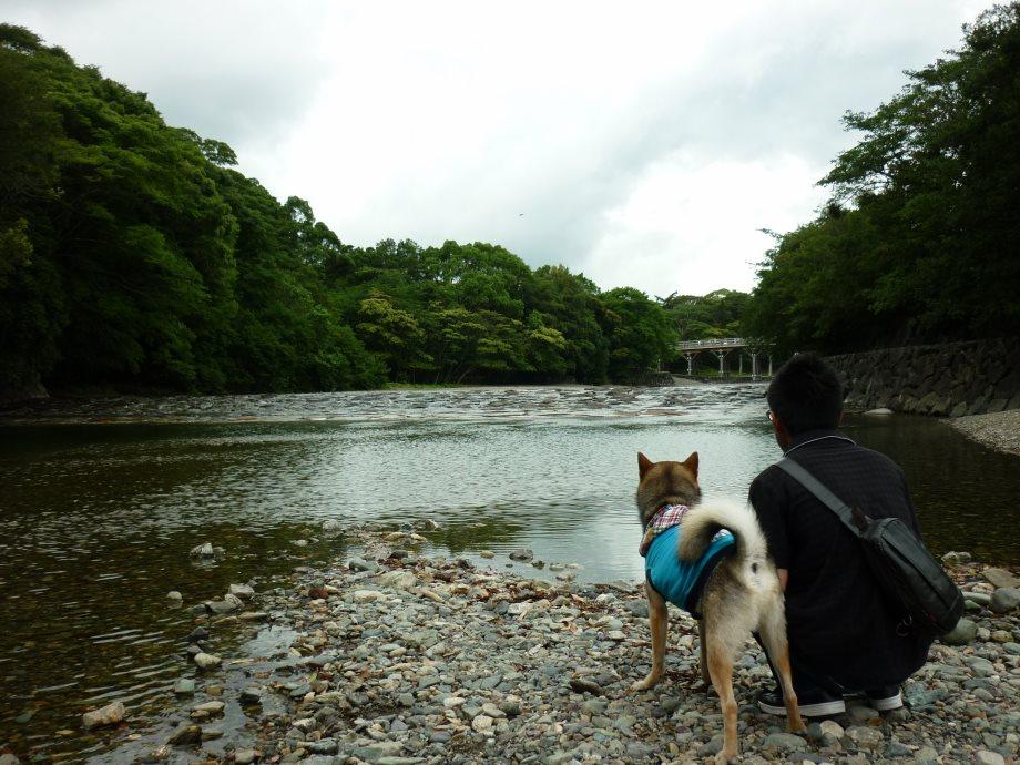 201406伊勢2-07