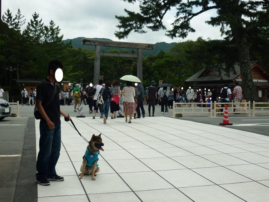 201406伊勢2-09