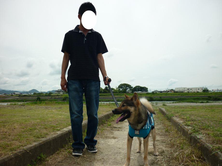 201406伊勢07-01