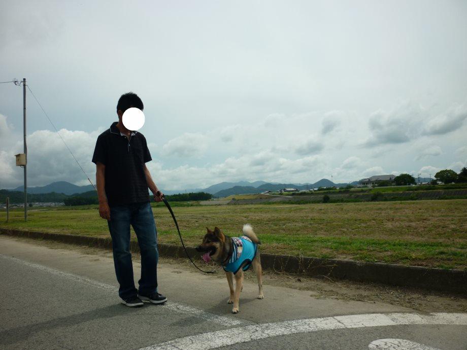 201406伊勢07-02