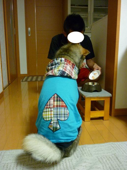 201406伊勢07-10