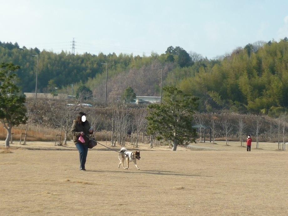 201312グリーンパーク-01