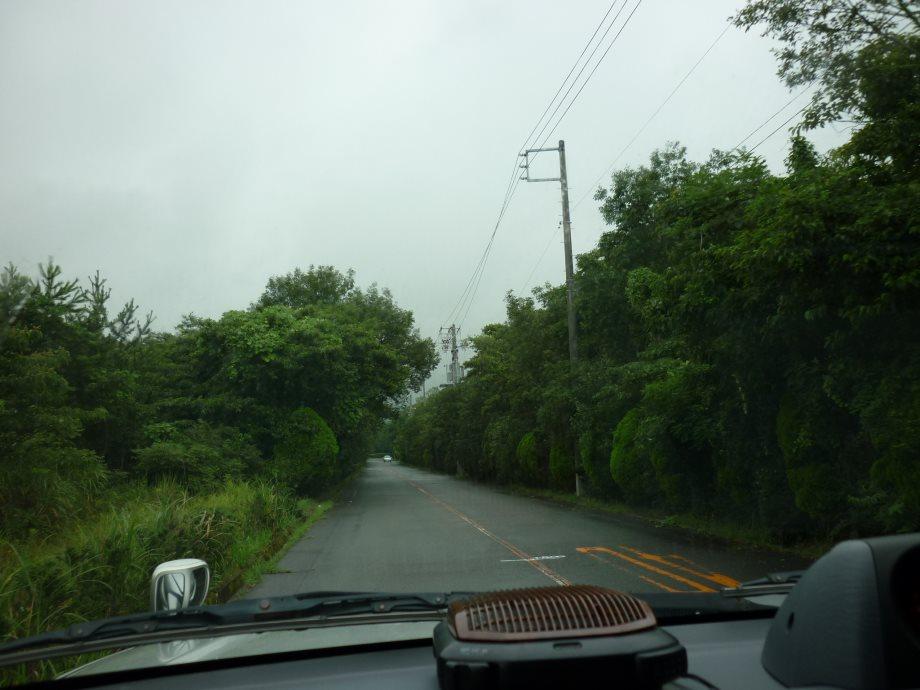 201408三重県民の森1-04