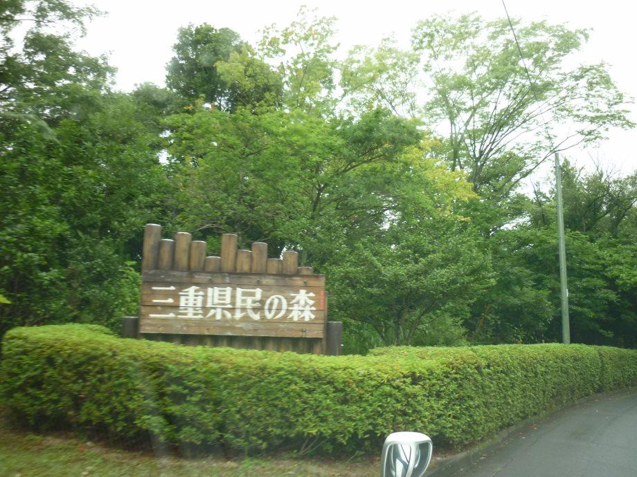 201408三重県民の森1-05