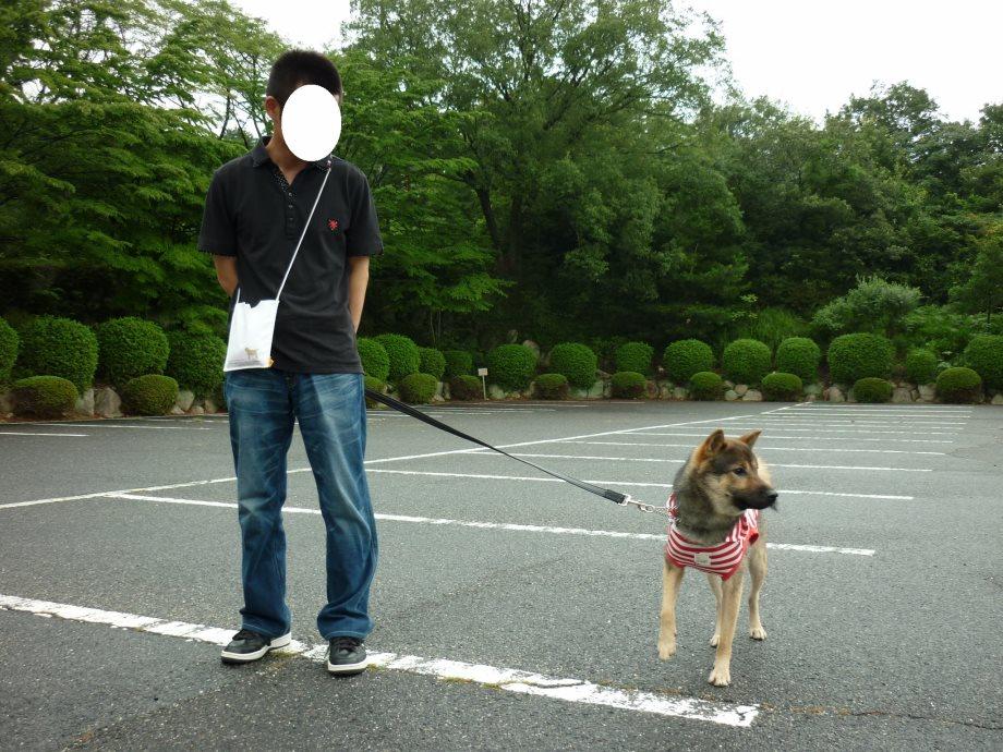 201408三重県民の森1-18