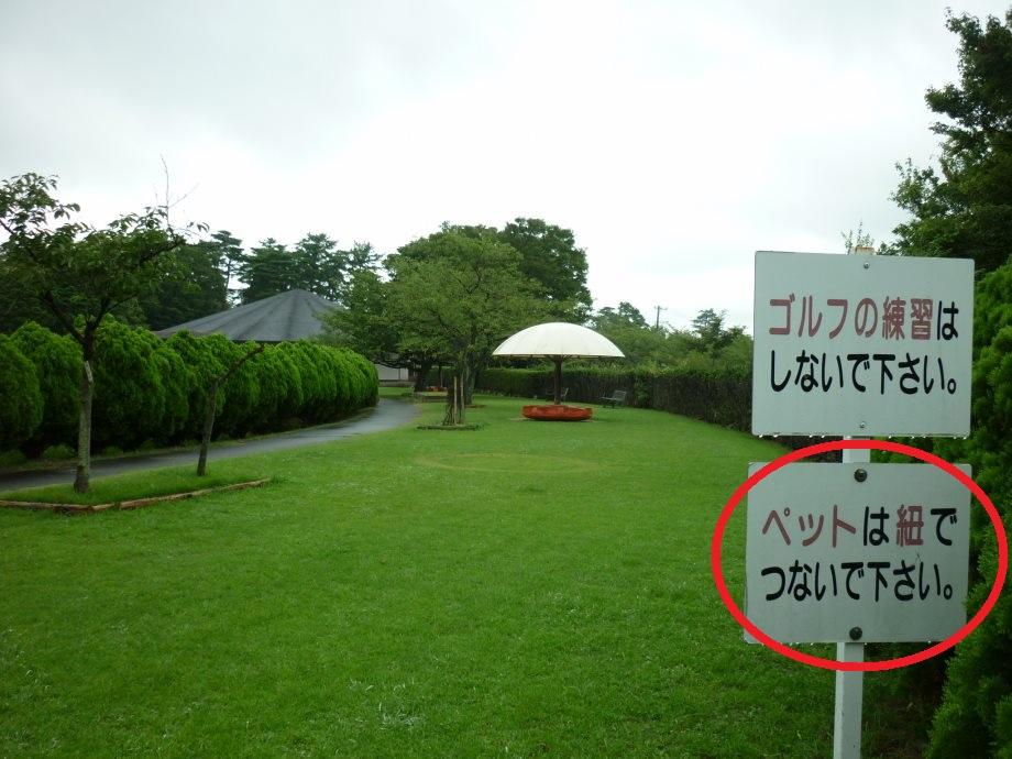 201408三重県民の森2-01