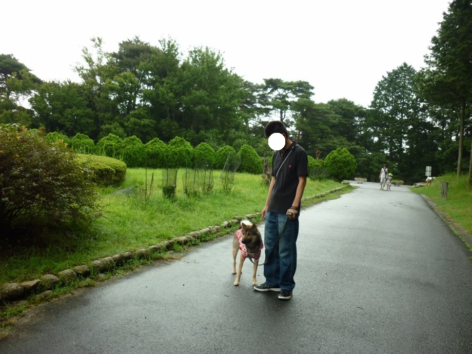 201408三重県民の森2-04