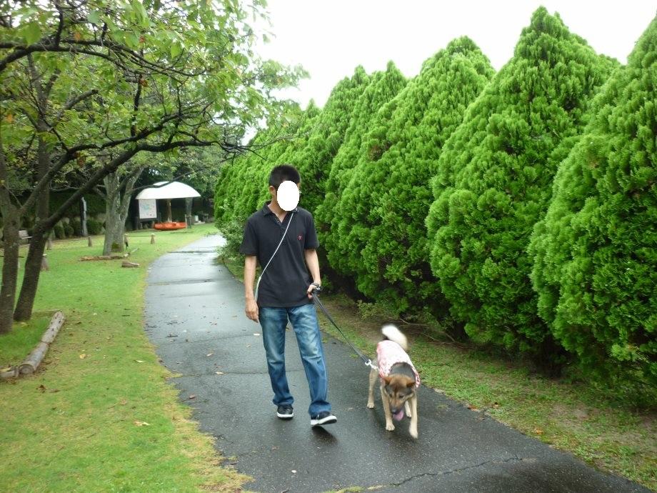 201408三重県民の森2-05