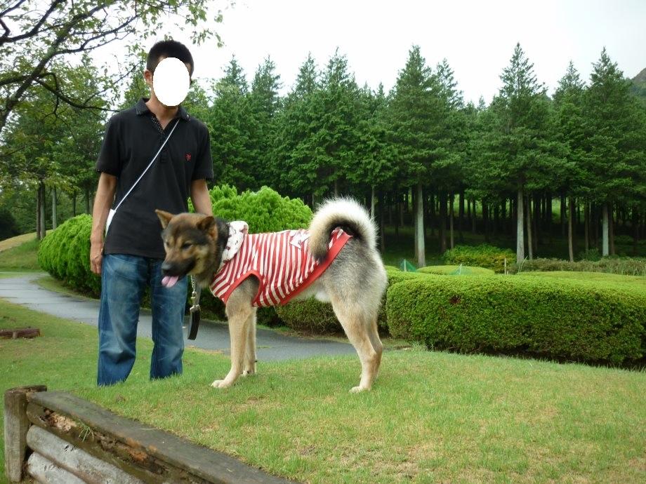 201408三重県民の森2-13
