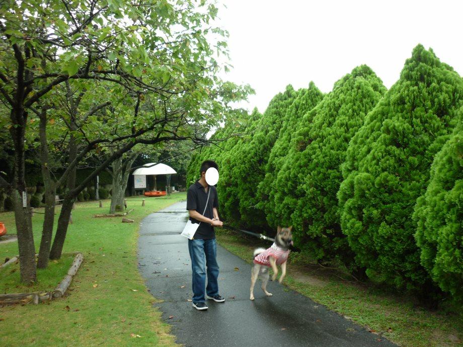 201408三重県民の森3ボ02