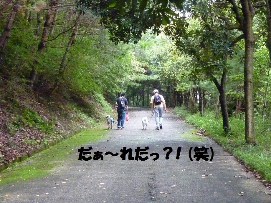 201408県民の森2-09