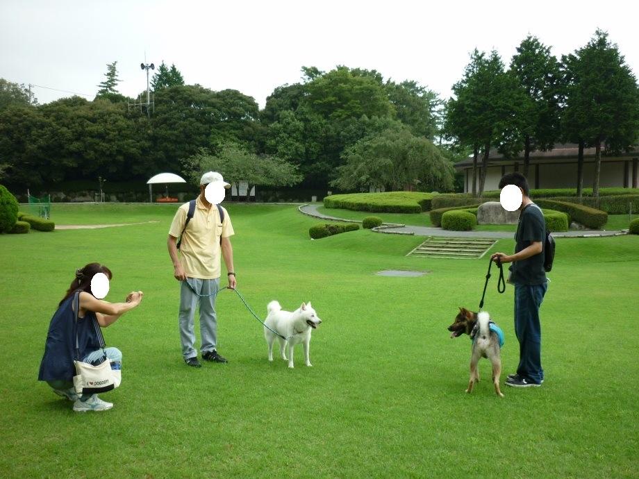 201408県民の森北斗君3-05