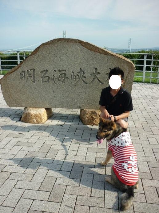201409淡路島2-11