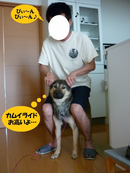 201409カムイライド04