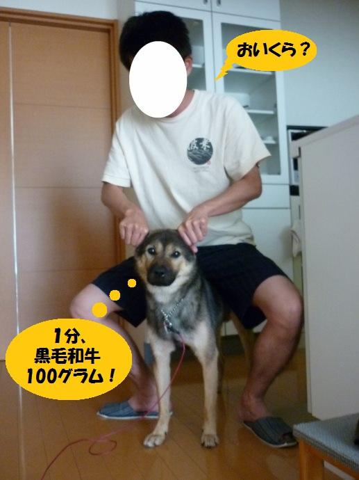 201409カムイライド05