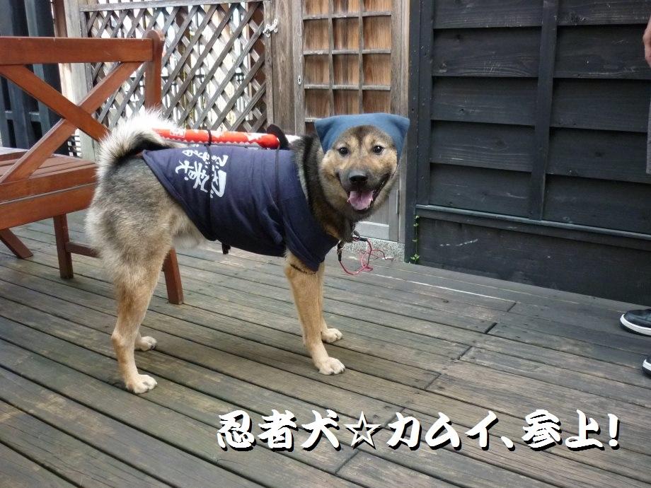 201409伊賀忍者2-01