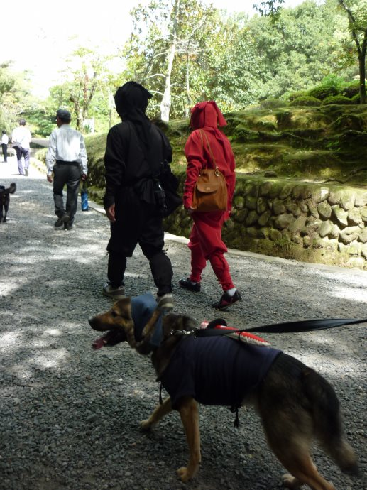 201409伊賀忍者2-07