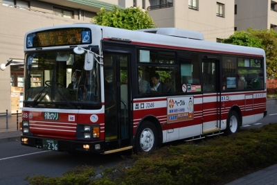 DSC_0092-m.jpg