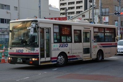 DSC_0552-m.jpg