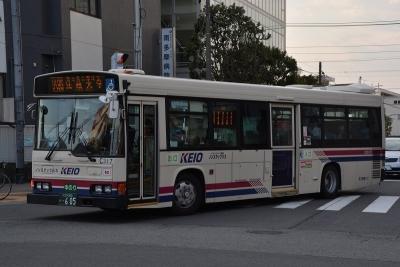 DSC_0894-m.jpg
