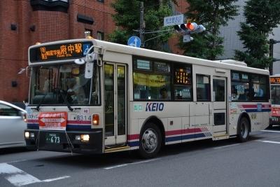 DSC_0989-m.jpg