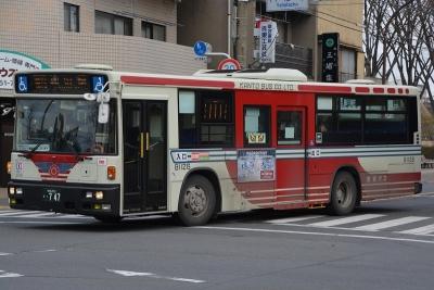 DSC_1167-m.jpg