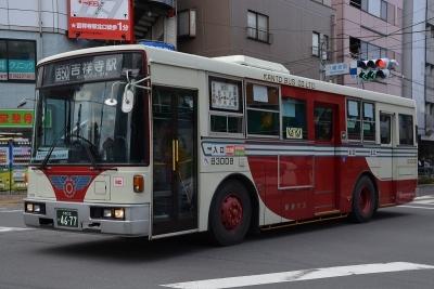 DSC_1351-m.jpg