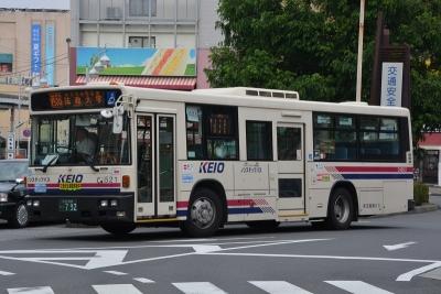 DSC_1555.jpg