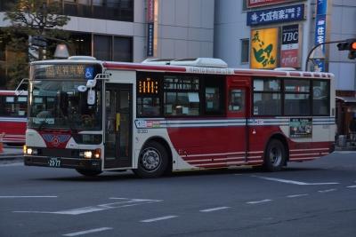 DSC_1681.jpg