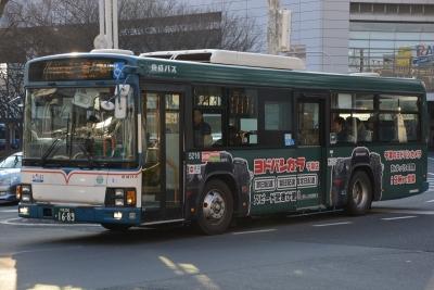 DSC_2064-m.jpg