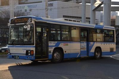 DSC_2066-m.jpg
