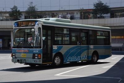 DSC_2709.jpg
