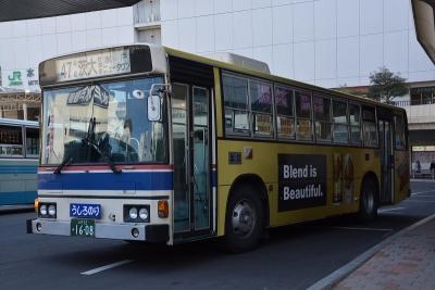 DSC_2860.jpg