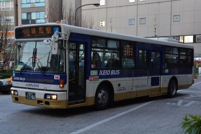 DSC_2960-m.jpg
