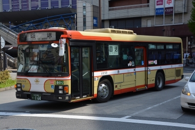 DSC_3364.jpg