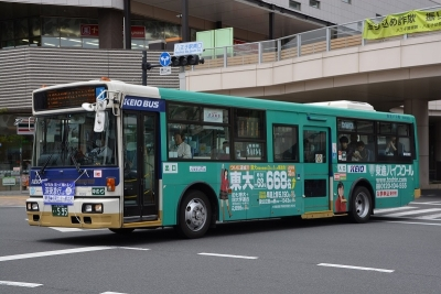 DSC_3521-m.jpg