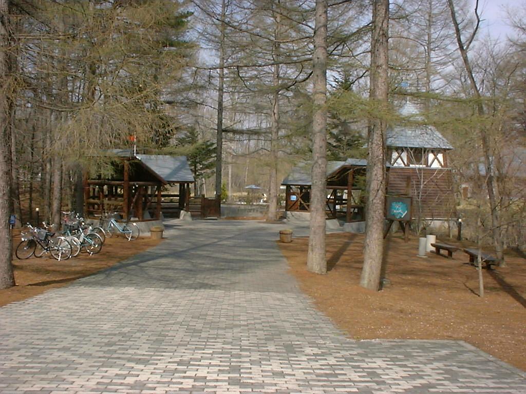 絵本の森美術館