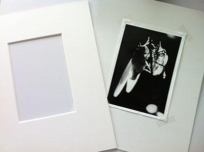 IMG_2035 - コピー