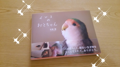 inko_no_otochan_R.jpg