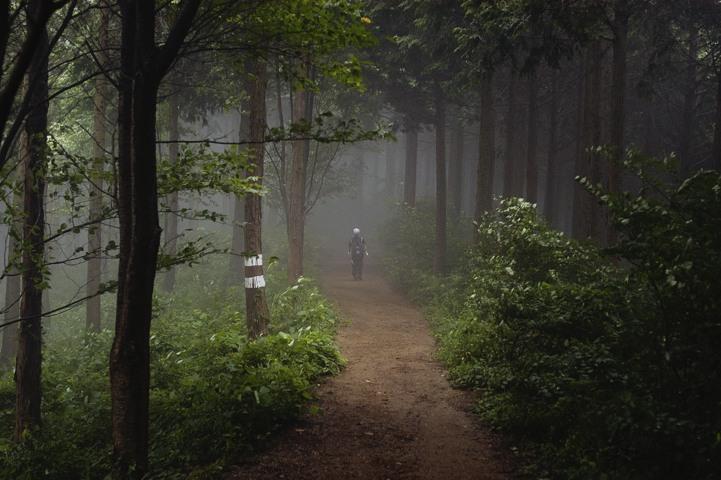 娘が霧の中に消えていきそうです。