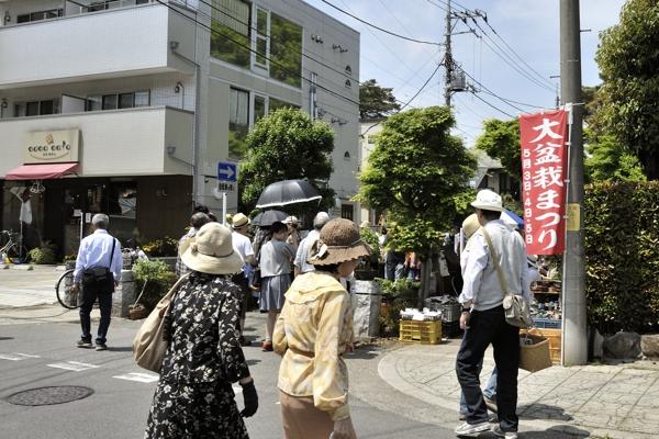 ここから盆栽市が開催されてる通りになります。