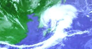 春の嵐91-340