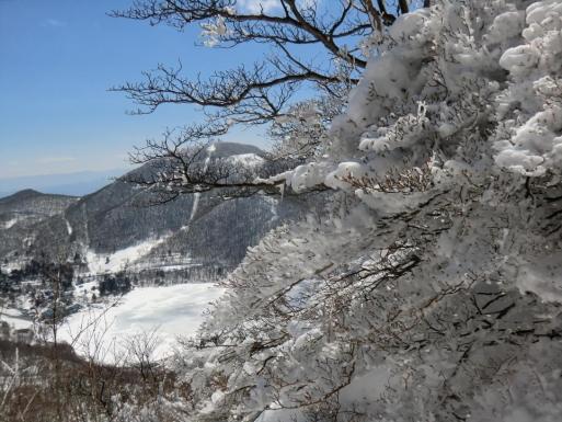 下山道で霧氷