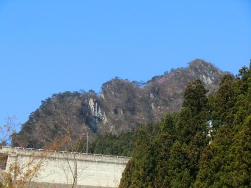 大仁田ダムの背後にアカヤシオ