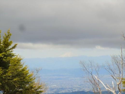 富士山、見えた