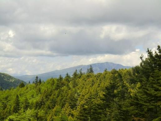 四阿山・根子岳も雲がとれた